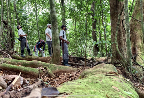Our team and Lapa Ríos nature guides revising trails with evidence of presence of species of terrestrial mammals.
