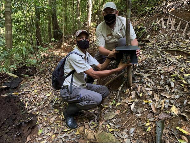 Lapa Ríos nature guides installing a camera trap.